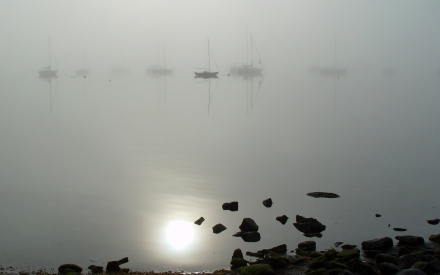 Bristol RI harbor in morning fog